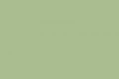 Салатовый_1863