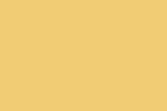 Желтый_нарцисс_1644
